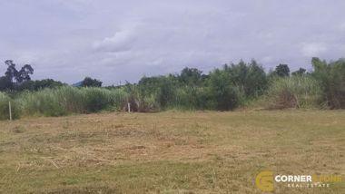 Picture of 243 wah² (972 sq.m) Bang Saray Land