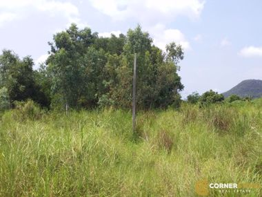Picture of 65 wah² (260sq.m) Land on Beach Side Bang Saray