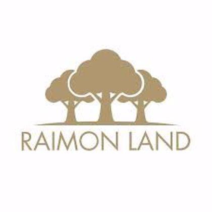 Picture for developer Raimond Land