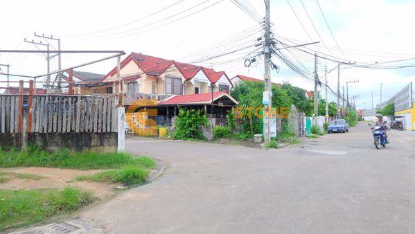 Picture of Ngamcharoen 1