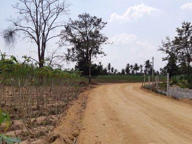 Picture of Huay Yai Land 9 Rai 350 sq.wah