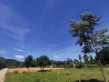 Picture of Bang Saray 91 wah²