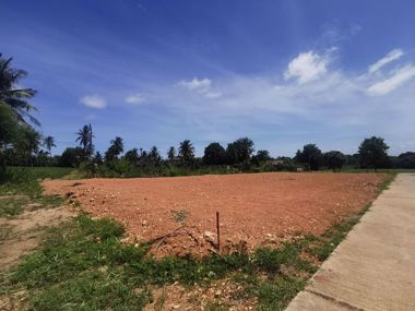 Picture of 89 wah² Bang Saray Countryside